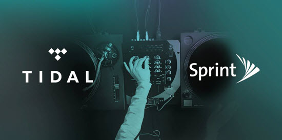 Sprint Tidal partnership