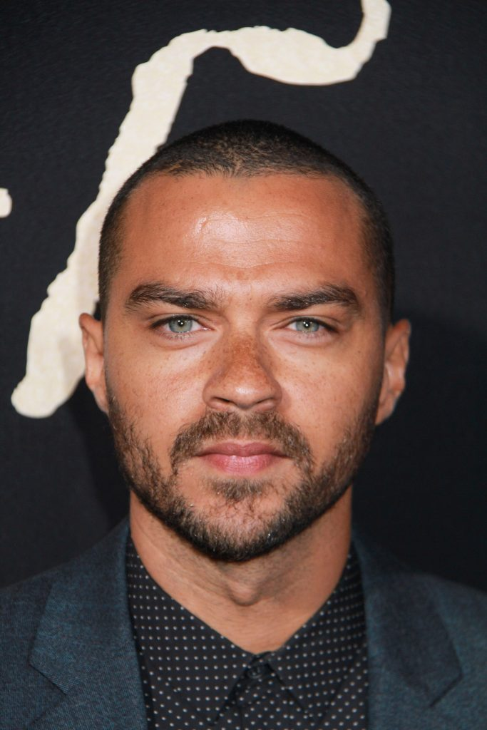 Jesse Williams Battles Aryn Drake-Lee for Custody in Divorce